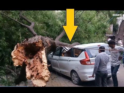 Car Accident In Narela | आंधी का कहर - नरेला में गाड़ी पर गिरा पेड़ - Breaking News