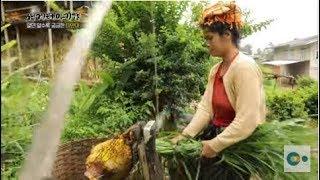 21세기의 모계사회, 미얀마