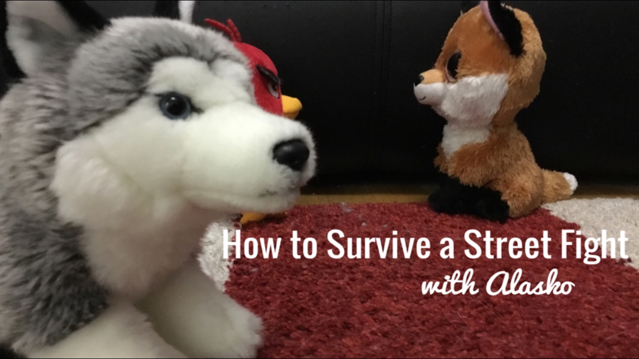 HOW TO SURVIVE A STREET FIGHT! With Alasko