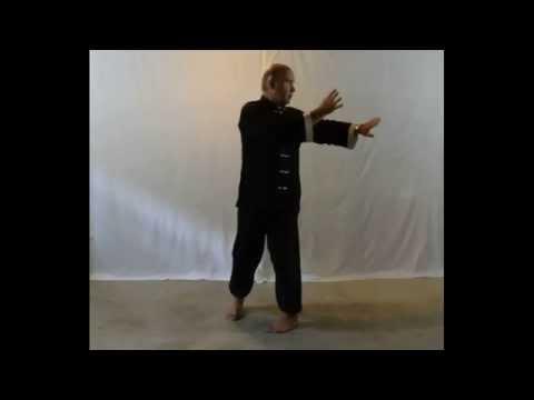 Gesture #5: Single Whip