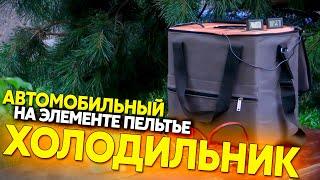 Автохолодильник на элементе Пельтье своими руками, термоконтейнер для путешествия