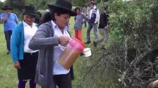 COSTUMBRES DE CCACHUBAMBA VISCHONGO VILCASHUAMAN AYACUCHO DESPUES DEL MATRIMONIO