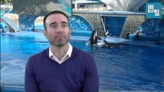 SOSdelfines entrevista al ex-adiestrador de orcas John Hargrove