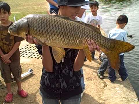 Balboa lake fishing jr youtube for Jrs upper red lake fishing report