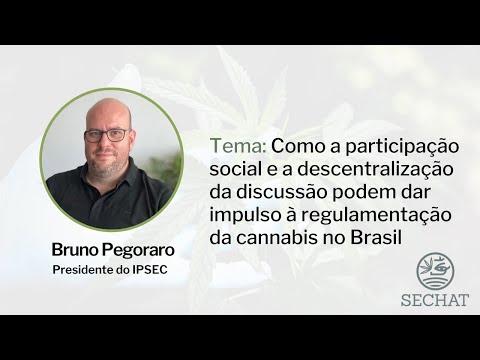 """""""A participação social na regulamentação da cannabis"""" - Com Bruno Pegoraro"""