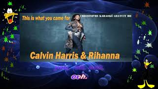 Calvin Harris & Rihanna   This is what you came for