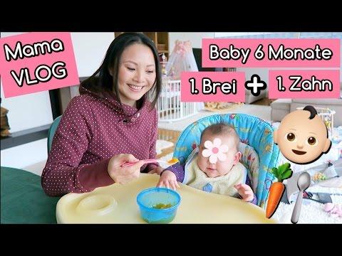 erster-baby-brei- -beikost-start- -lilis-erster-zahn- -6.-monat- -mama-vlog- -mamiseelen