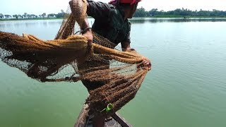 Net Fishing | Catching Lot of Fish By Cast Net | Fishing with beautiful nature (Part-10)