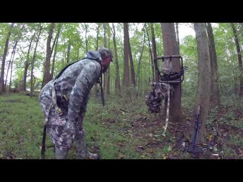 Bowhunting Delaware