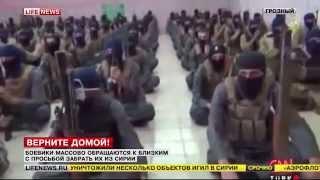 Террористы ИГИЛ в Сирии просятся домой
