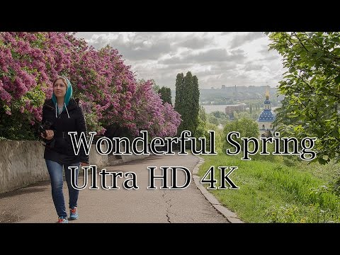 Сирень в Ботаническом саду Киева. Liliac in Kiev. HD 4K