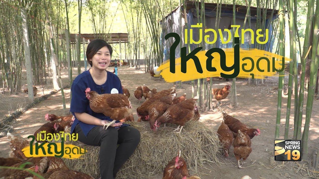 ฟาร์มไก่ไข่ ไฮ่ฮัก ว่าน-ตั้ว จ ราชบุรี