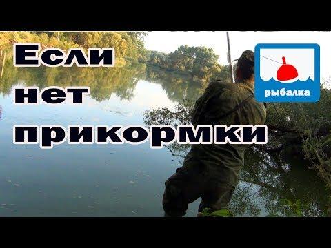 Что делать если нет прикормки + отчёт о рыбалке