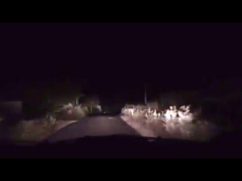 Strange car chasing