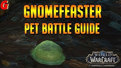 Gnomefeaster Pet Battle Guide - BFA