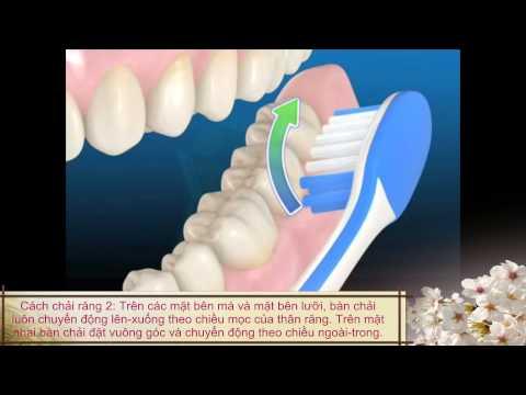 Cách vệ sinh răng miệng-Chải răng đúng cách-cách dùng chỉ tơ nha khoa-lấy cao răng định kỳ