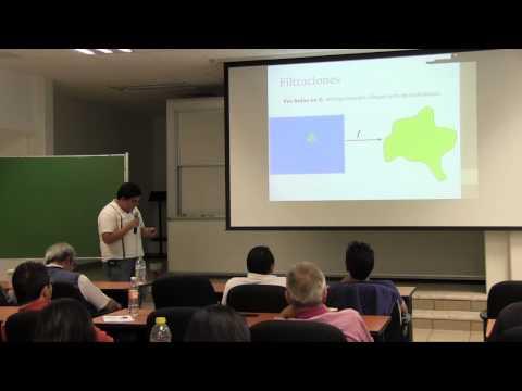 """Conferencia """"TDA en nichos ecológicos"""", Vidal Alí"""