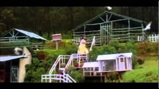 Kilipaadumetho || Neelagiri || Malayalam Film Song
