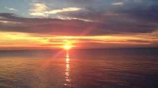 チューリップ - 夕陽を追いかけて