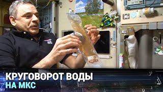 Круговорот воды на МКС
