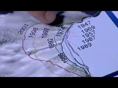 Antarctic Peninsula crisis - BBC Environment