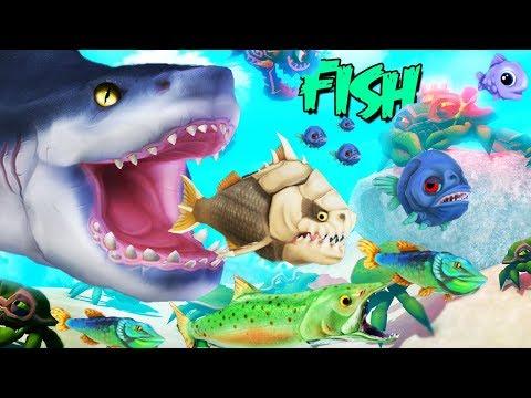 LA VIDA DE UN PEZ ES UN INFIERNO | FEED AND GROW FISH