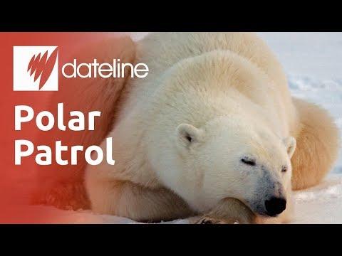Polar Patrol