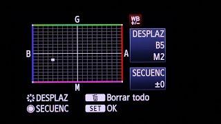 Desplazamiento del BALANCE DE BLANCOS en tu cámara réflex