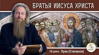 Братья Иисуса Христа. Кто они? Игумен Лука (Степанов)