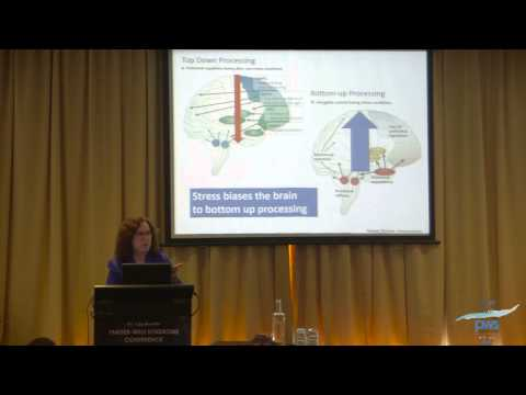 How the Brain Works   DR J FORSTER