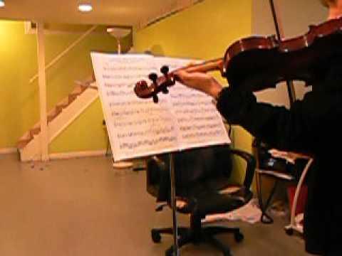 Violin Lessons in Ada, Grand Rapids Michigan