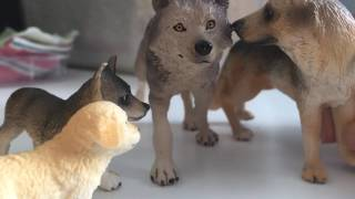 The Story Of A Pack (Schleich dog movie) pt. 7