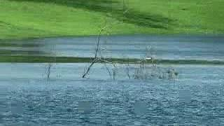 Moby - Evening Rain