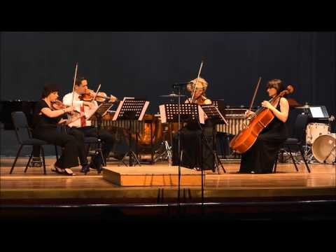 Wits University Music Students: Sound Us Out Instrumental Concert 2013 HD