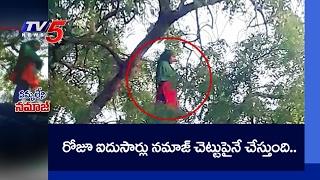 Namaz on Neem Tree | Viral in Social Media | TV5 News