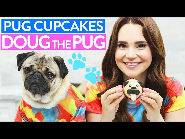 DIY PUG CUPCAKES w/ Doug the Pug!