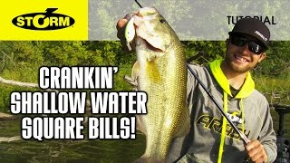 Square Bill Crankbaits in Shallow Water: HOW TO FISH