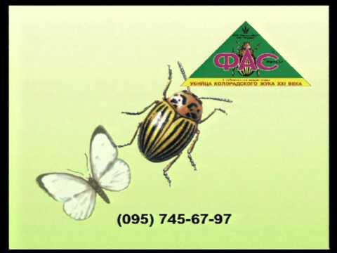 ФАС препаратот насекомых. Реклама 90-х