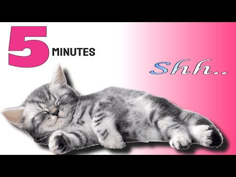 Music To Make Your Cat Sleep Within 5 Minutes | Cat Sleep Music
