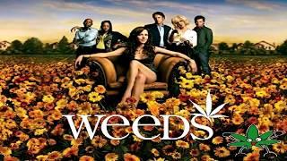 10 Series TV Marihuaneras para Fumetas 2016 Links Directos Para Ver Online en Español