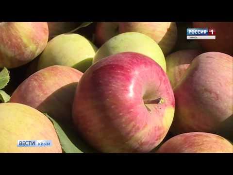 Смотреть фото Крымские аграрии представили продукцию на выставке