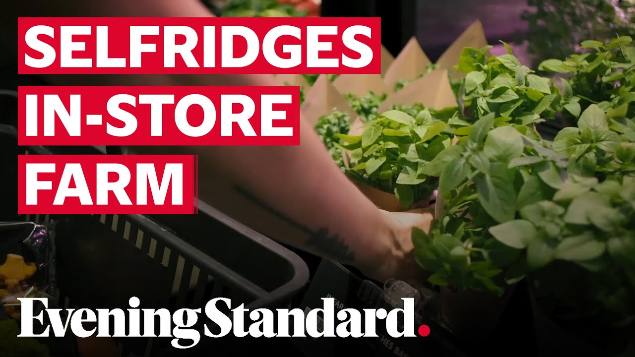Londons' Selfridges stores to grow fresh produce with vertical farming units indoors
