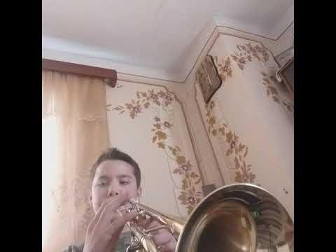 O Melodie Frumoasa Cântată La Trompeta!!!