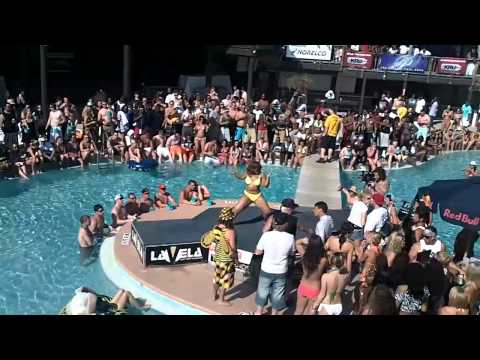 la vela bikini contest