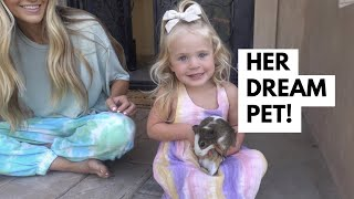 SURPRISING POSIE WITH A PET GUINEA PIG FOR 24 HOURS
