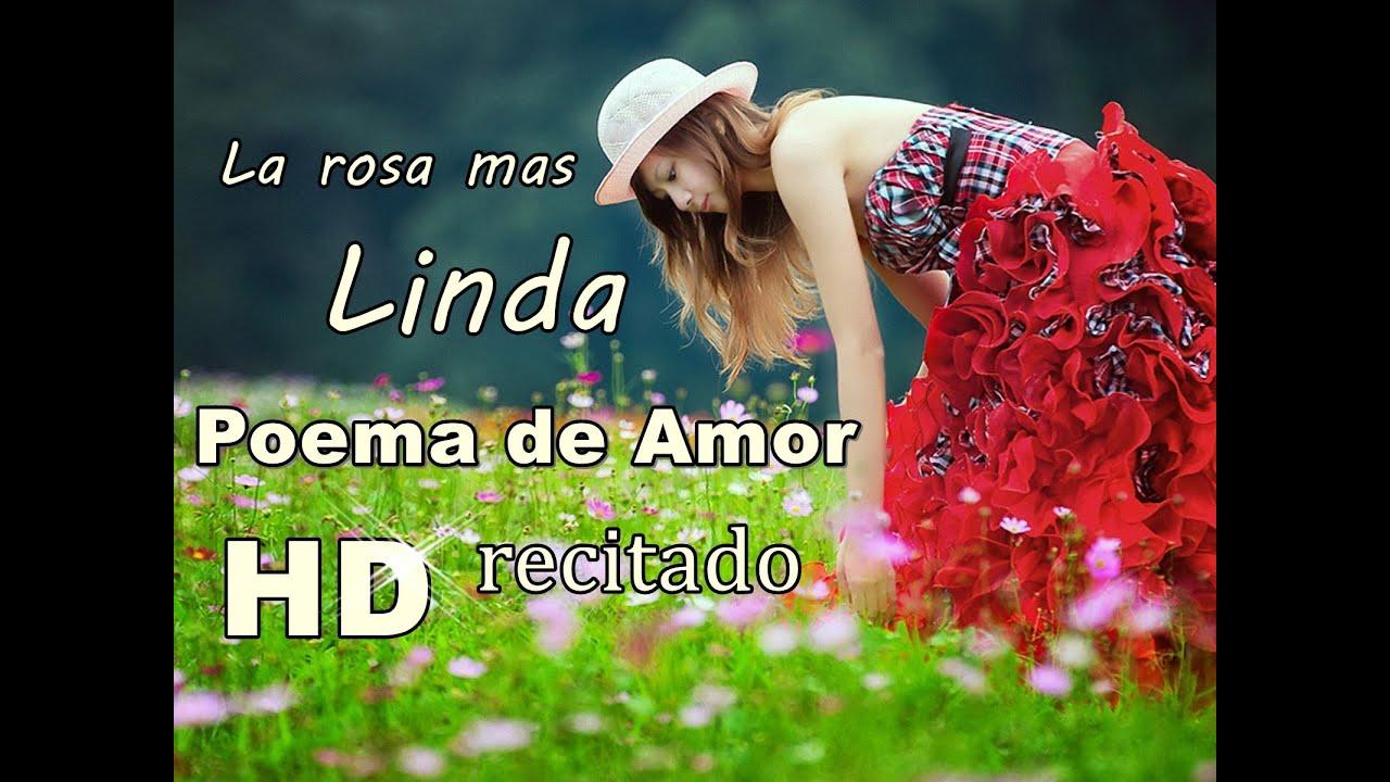 Poema de amor para la mujer que amo la rosa mas linda de for Amor en el jardin