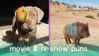 Animal Movie & TV Puns