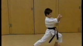 Black belt karate kid 8 year old mark garry