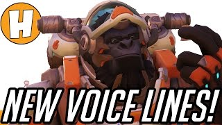 Overwatch - New Year's Resolution Voice Lines, Roadhog Hook Changes!
