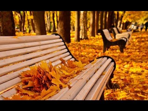Осень - лучшее время года